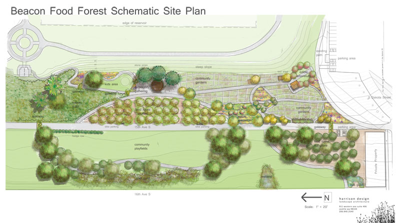 Seattle Food Forest Design