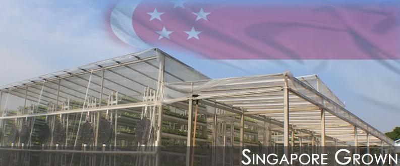 singaporegrown