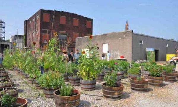 super creative organic gardens around the world popularresistance org. Black Bedroom Furniture Sets. Home Design Ideas