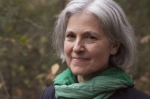 Jill Stein is considering another Green Party presidential bid. Photo via Wikimedia Commons