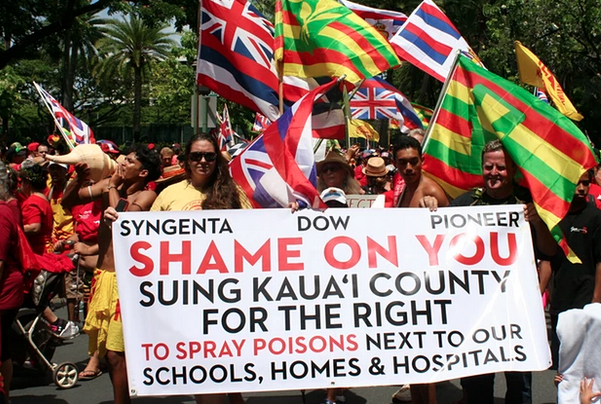 After four separate attempts to rein in the companies failed, an estimated 10,000 people marched through Honolulu's Waikiki tourist district. Photograph: Christopher Pala for the Guardian