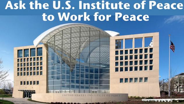 institute of peace essay