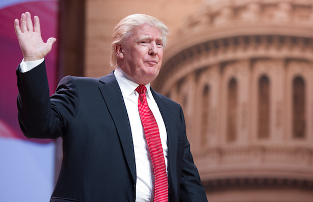 In times of national crisis and public outrage, strange and dangerous candidates often arise. Above, Donald Trump. (Christopher Halloran / Shutterstock)