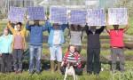Solar from www.1010uk
