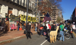 Blockade at USTR in Washington, DC. Nov. 16, 2015. From RT Ruptly.