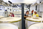 Ni Meijuan, center, with trainees Enabel Perez, right, and Maria Elisena de Leon, left, at Keer Group's cotton mill in Lancaster County, South Carolina, on May 20, 2015. Photographer: Travis Dove/TRAVIS DOVE/The New York Times/REDUX