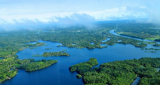 Aerial view of the Amazon Rainforest near Manaus, the capital of the Brazilian state of Amazonas, Brazil. (Photo by Neil Palmer/CIAT for Center for International Forestry Research via Flickr)