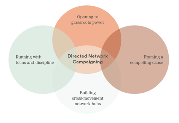 The four principles behind directed-network campaigning approach. (Image courtesy of NetChange Consulting 2016)