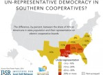 racial-disparity-in-electric-cooperatives.003-768x576