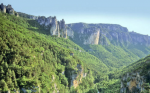Cevennes National Park, threatened by E.On's biomass plans
