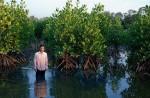 Thai shrimp farmer, Noppadol Tawee, uses mangroves to grow fish, crab and shrimp in a sustainable way at his farm in Kanchanadit district, Surat Thani [Antolin Avezuela Aristu/Al Jazeera]