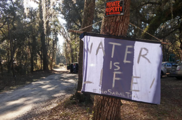 Opponents of the Sabal Trail pipeline say it is not only harming the natural beauty of the Suwannee river but also doing irreversible environmental damage. Photograph: Richard Luscombe for the Guardian