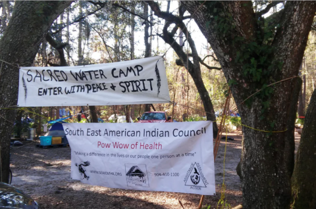 Protesting the pipeline at Live Oak, Florida. Photograph: Richard Luscombe for the Guardian