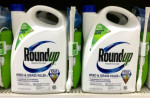 Monsanto's best-selling Roundup herbicide. Flickr