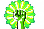 Solidarity Fist with flower
