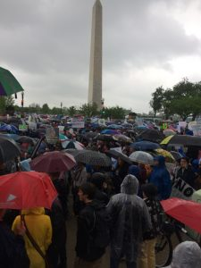 A sea of umbrellas and heavy rain did not stop the tens of thousands from the March for Science. Photo John Zangas
