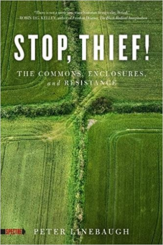 Stop Thief The Commons and Resistance by Peter Linebaugh