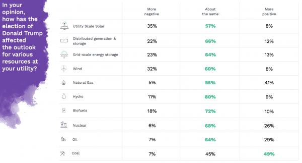 Utilities predict Trump impact