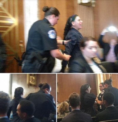 Jess Rechtschaffer arrested at Senate hearing protesting FERC appointees June 6, 2017 by BXE.