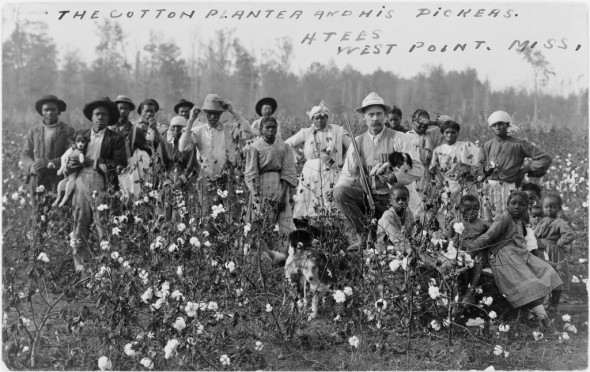 cotton-plantation-mississippi-1-1024x645