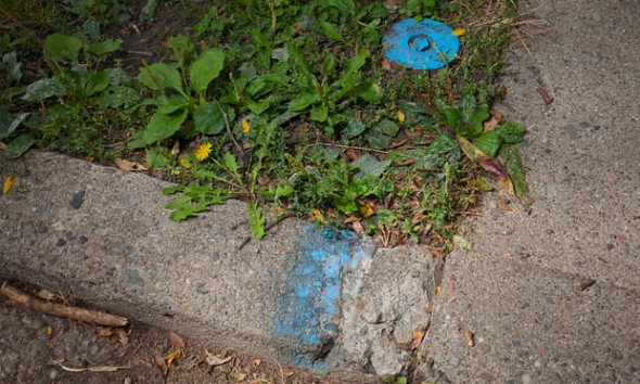 The Detroit water and sewerage department marks the curb in front of houses whose water it has shut off, including this house in Detroit's North End neighborhood. Photograph: Garrett MacLean for the Guardian