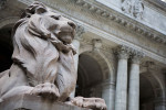 1048877_1_1016-library-lion_standard