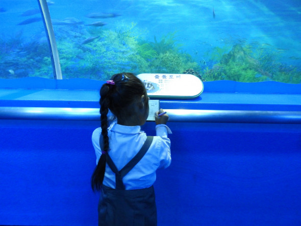 Student in the aquarium section of Pyongyang's zoo. While the zoo was well-maintained, by far most interesting was watching the human interactions, from schoolchildren to adults. Koreans returned our smiles with deep, genuine smiles. Watch a clip from the zoo.