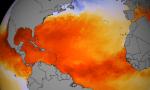 sst-ocean-heat_NOAA-NNVL