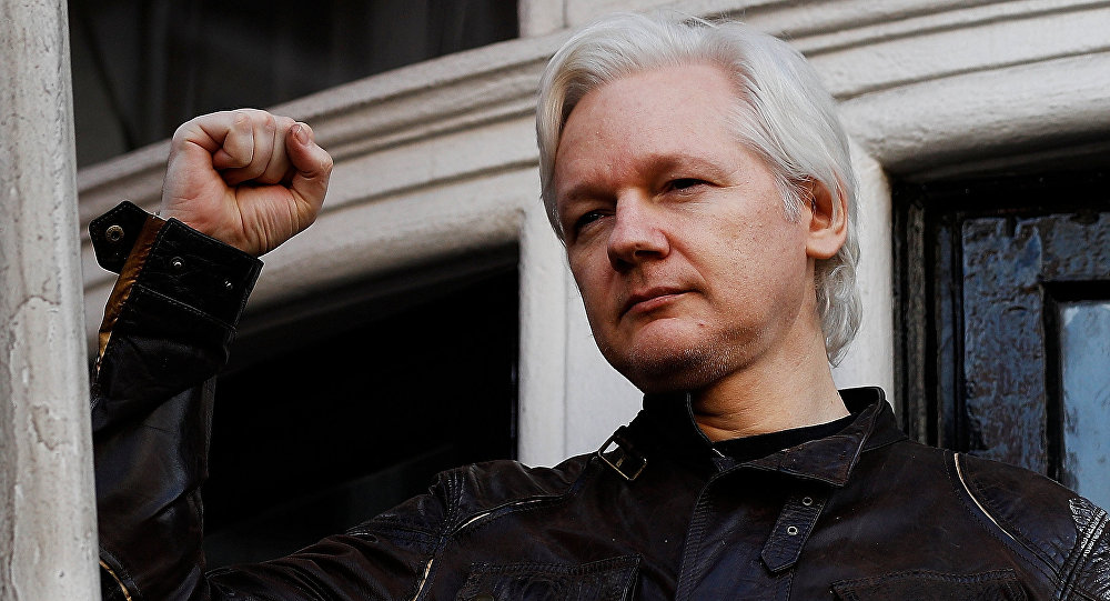 Assange ger sin version
