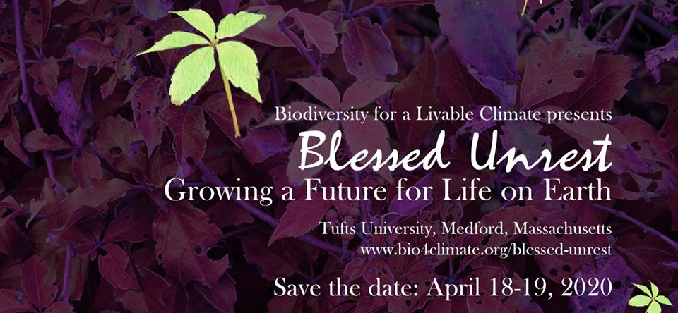Blessed Unrest: Growing A Future For Life On Earth